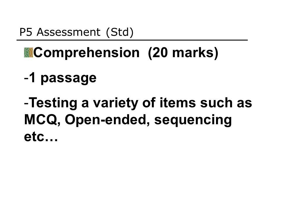 P5 Assessment (Std) Comprehension (20 marks) -1 passage -Testing a variety of items such as MCQ, Open-ended, sequencing etc…