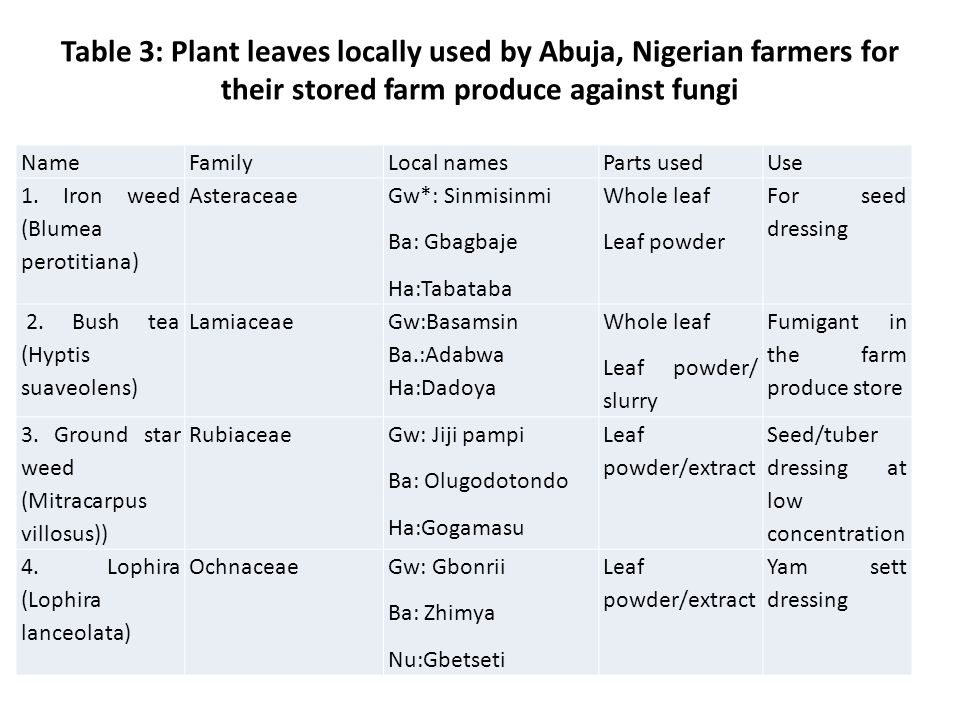 Table 3: Plant leaves locally used by Abuja, Nigerian farmers for their stored farm produce against fungi NameFamilyLocal namesParts usedUse 1.