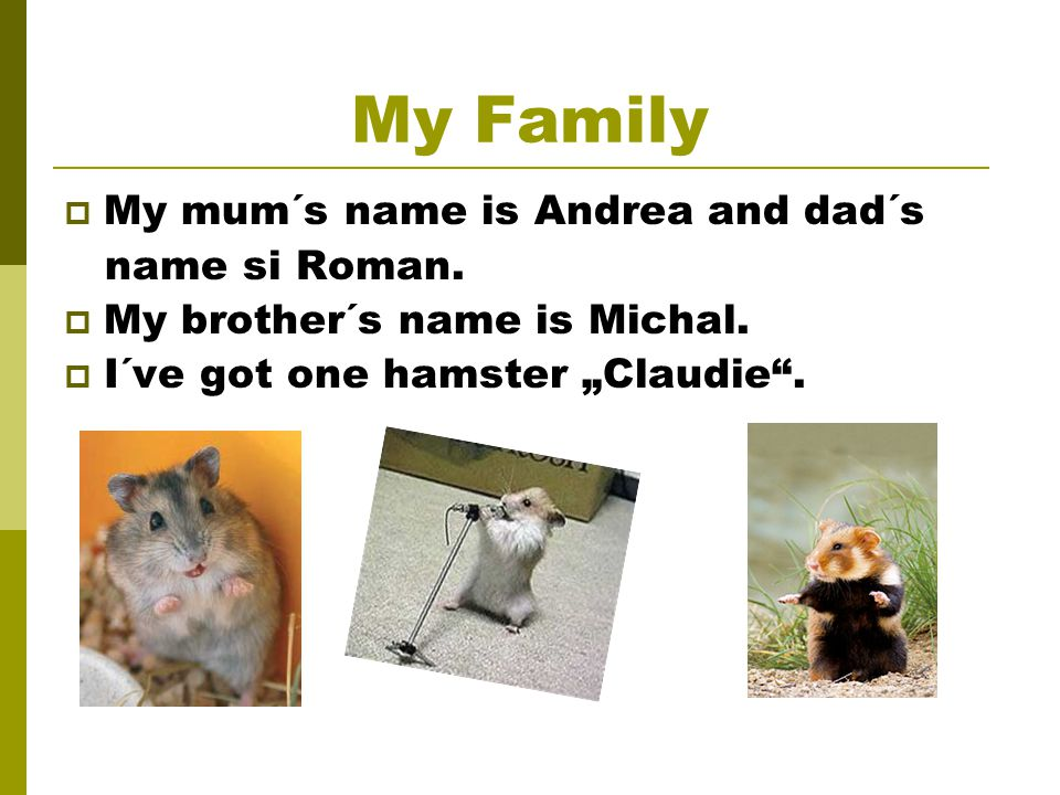 My Family  My mum´s name is Andrea and dad´s name si Roman.