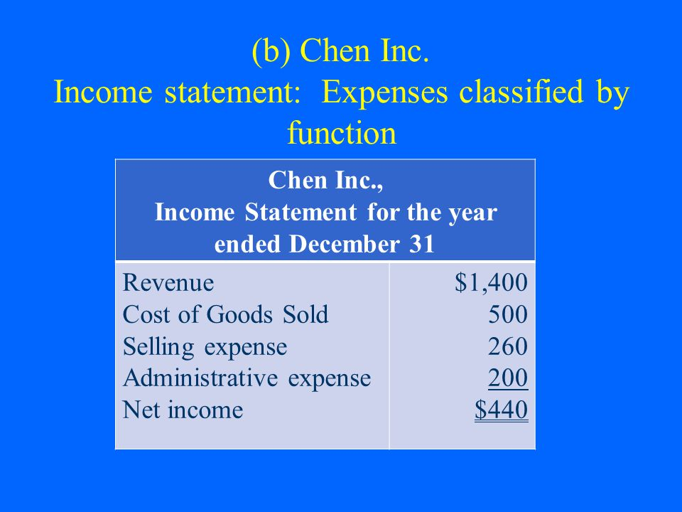 (b) Chen Inc. Income statement: Expenses classified by function Chen Inc., Income Statement for the year ended December 31 Revenue Cost of Goods Sold
