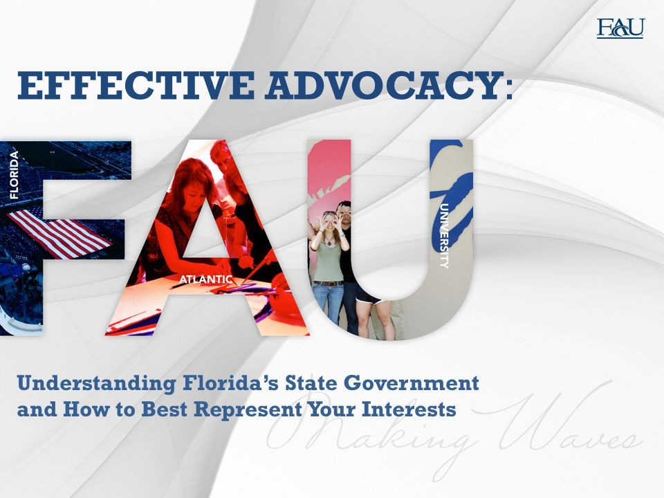 EFFECTIVE ADVOCACY: Understanding Florida's State Government and How to Best Represent Your Interests