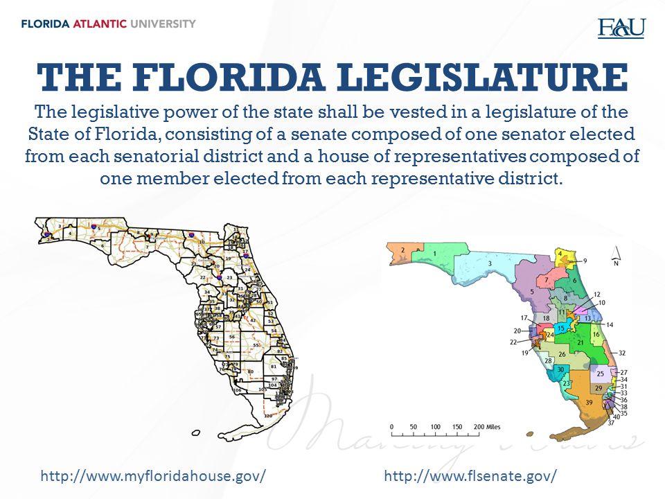 THE FLORIDA LEGISLATURE The legislative power of the state shall be vested in a legislature of the State of Florida, consisting of a senate composed o