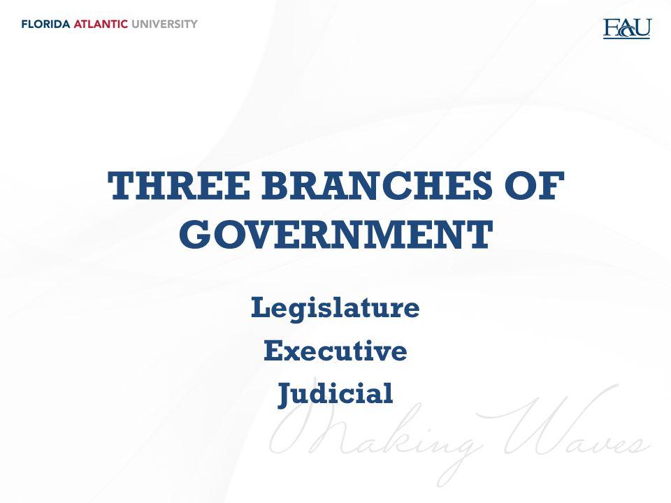 THREE BRANCHES OF GOVERNMENT Legislature Executive Judicial
