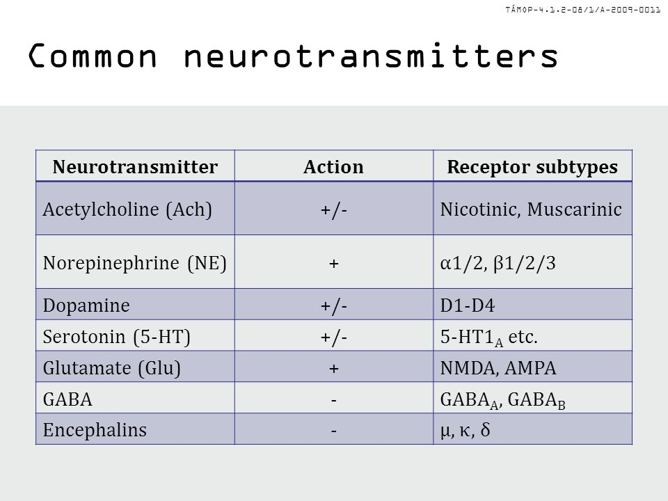 TÁMOP-4.1.2-08/1/A-2009-0011 Common neurotransmitters NeurotransmitterActionReceptor subtypes Acetylcholine (Ach)+/-Nicotinic, Muscarinic Norepinephri