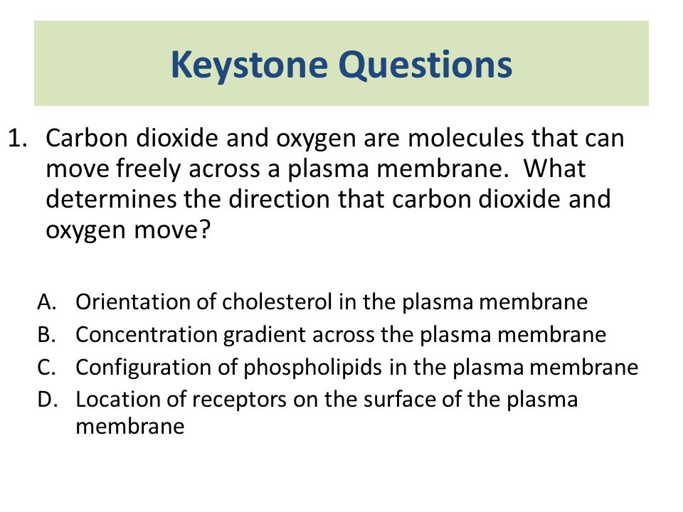 Keystone Questions 1.Carbon dioxide and oxygen are molecules that can move freely across a plasma membrane. What determines the direction that carbon