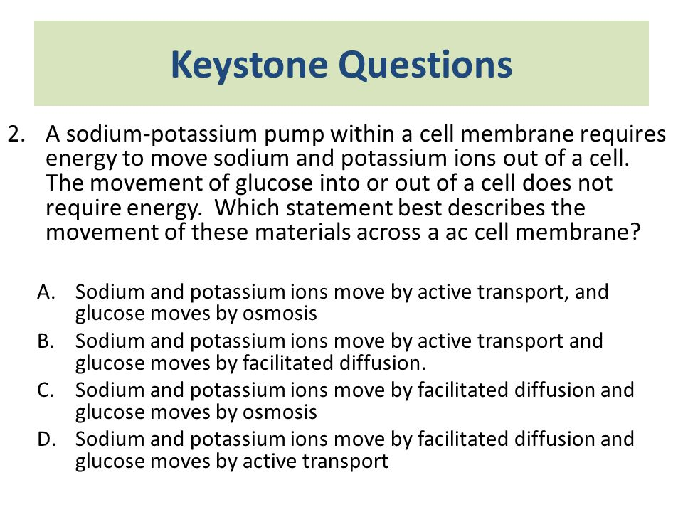 Keystone Questions 2.A sodium-potassium pump within a cell membrane requires energy to move sodium and potassium ions out of a cell. The movement of g