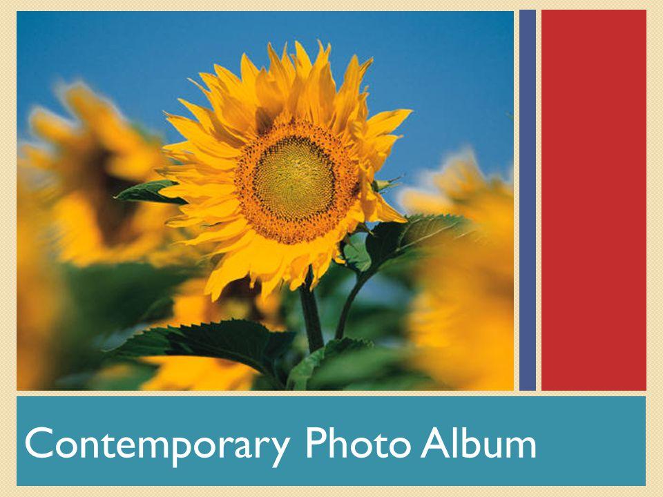 Contemporary Photo Album