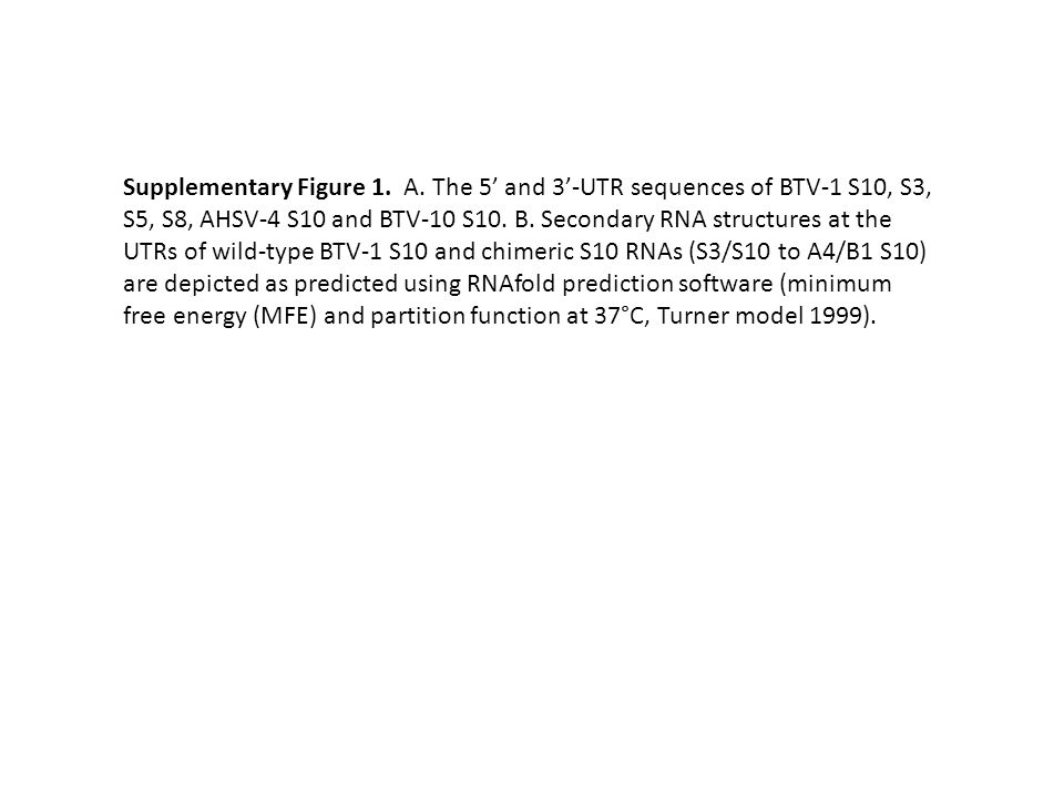 Supplementary Figure 1. A. The 5' and 3'-UTR sequences of BTV-1 S10, S3, S5, S8, AHSV-4 S10 and BTV-10 S10. B. Secondary RNA structures at the UTRs of