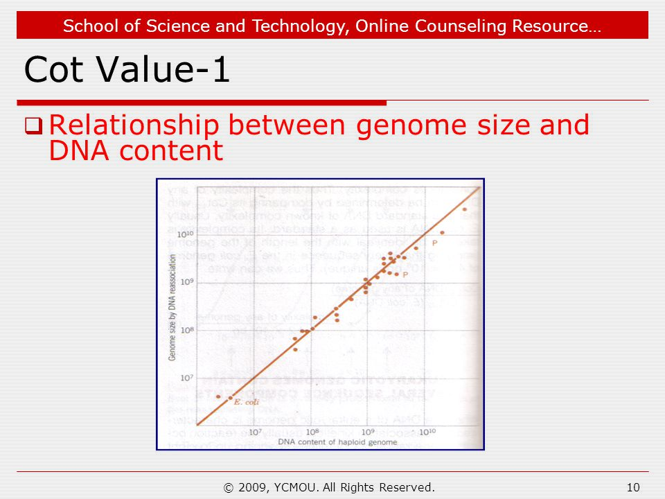 School of Science and Technology, Online Counseling Resource… Cot Value-1  Relationship between genome size and DNA content 10© 2009, YCMOU. All Righ