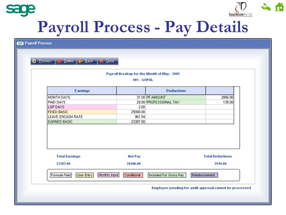Payroll Process - Pay Details