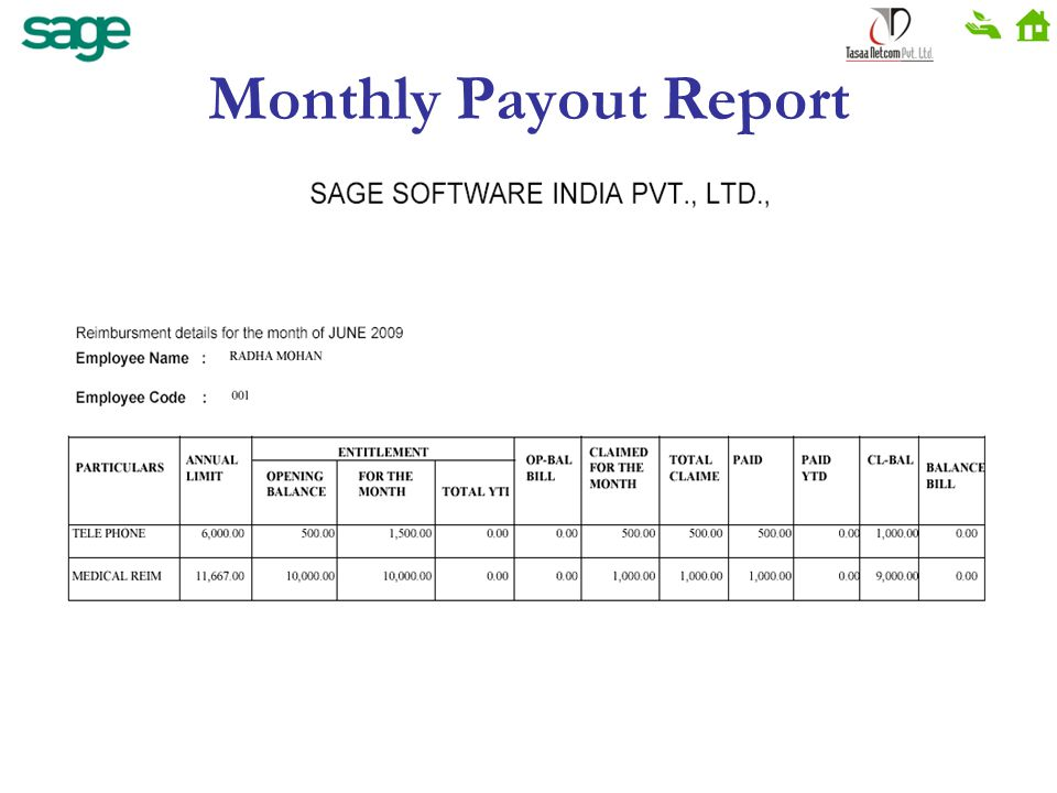 Monthly Payout Report