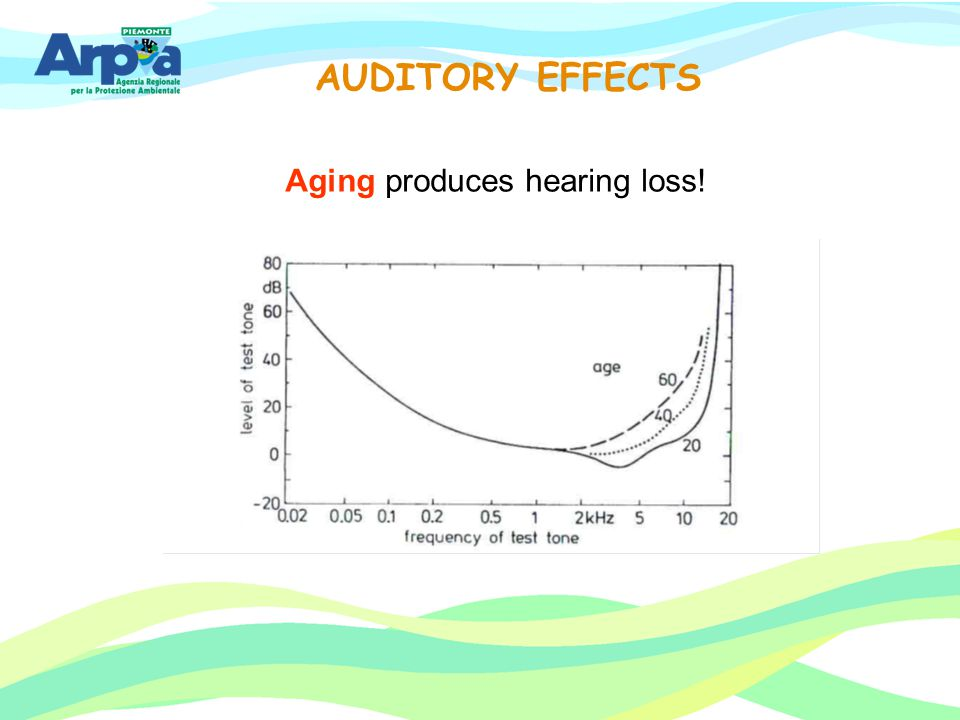 AUDITORY EFFECTS Aging produces hearing loss!