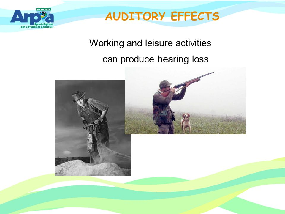 Working and leisure activities can produce hearing loss AUDITORY EFFECTS
