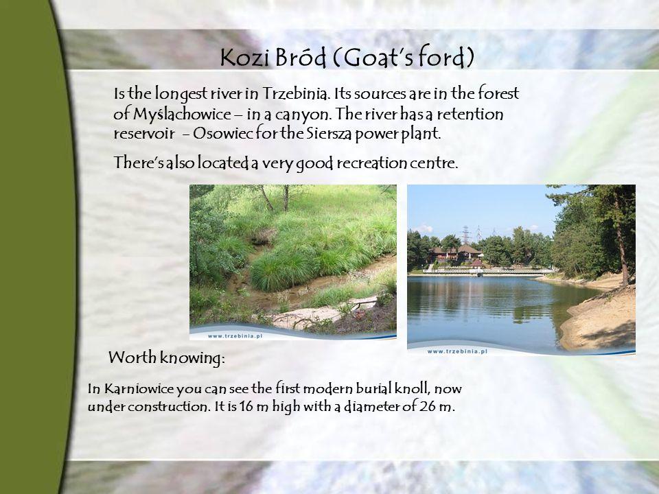 Kozi Bród (Goat's ford) Is the longest river in Trzebinia.