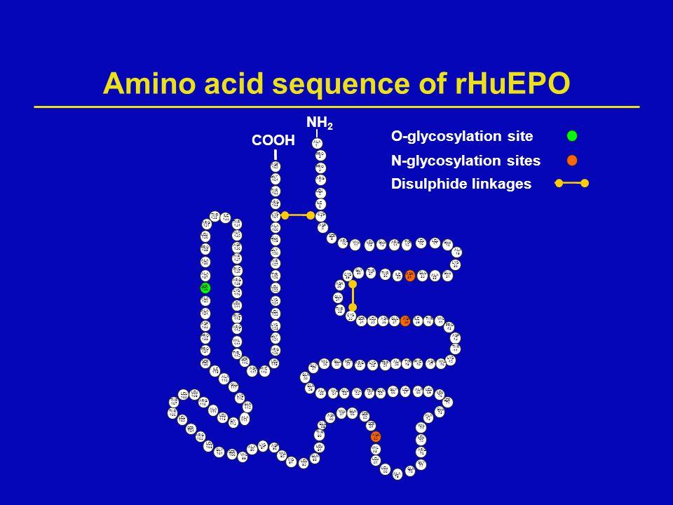 Amino acid sequence of rHuEPO N-glycosylation sites Disulphide linkages O-glycosylation site