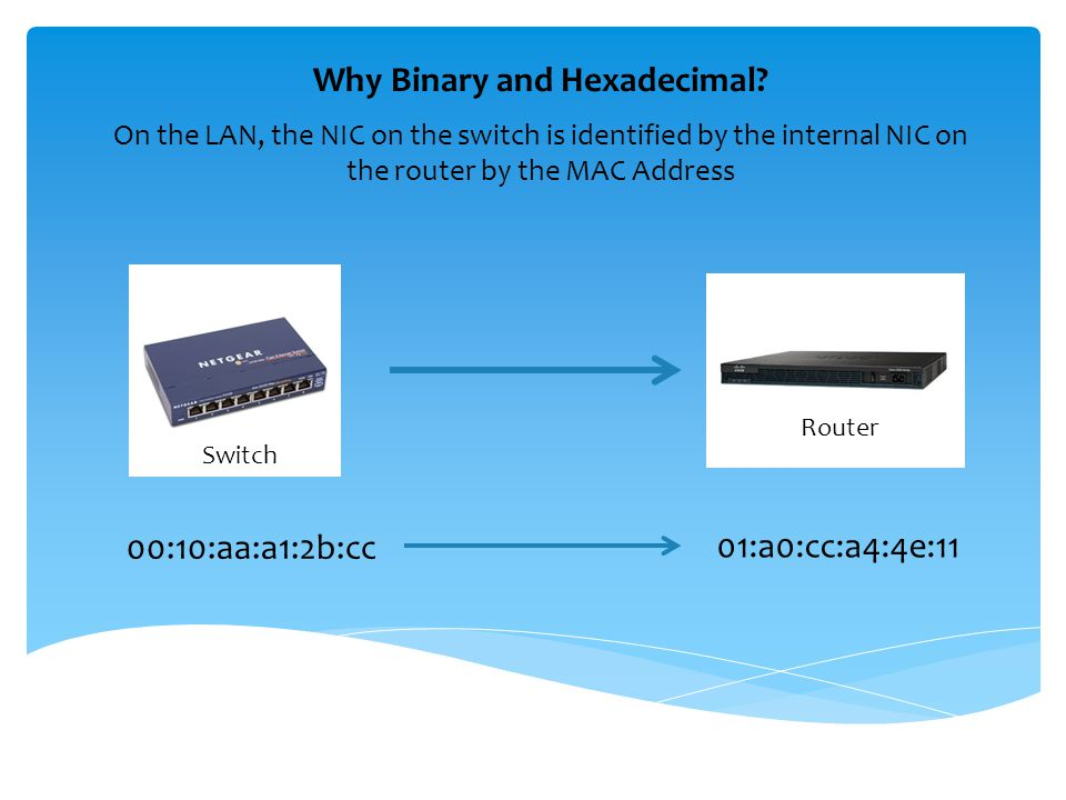 Why Binary and Hexadecimal? On the LAN, the NIC on the switch is identified by the internal NIC on the router by the MAC Address 01:a0:cc:a4:4e:11 00:
