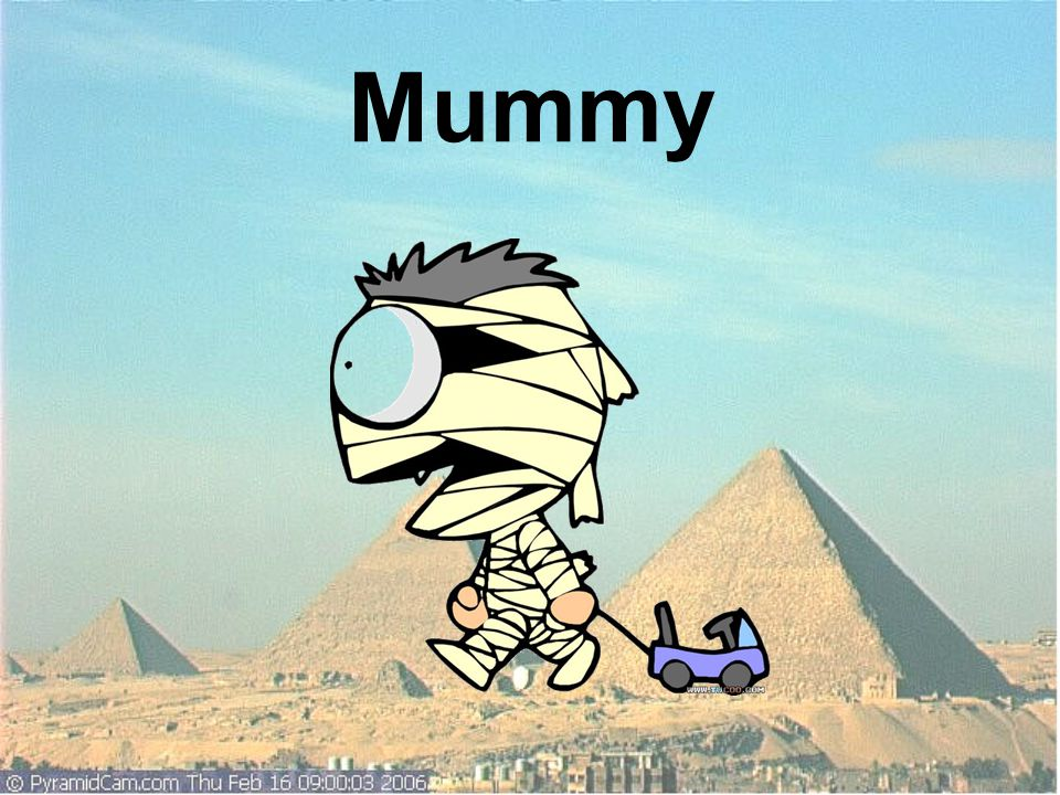 Q4.Have you ever known the process to make mummies.