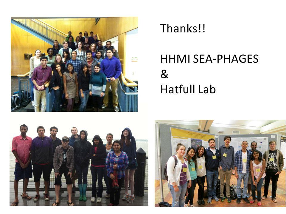 Thanks!! HHMI SEA-PHAGES & Hatfull Lab