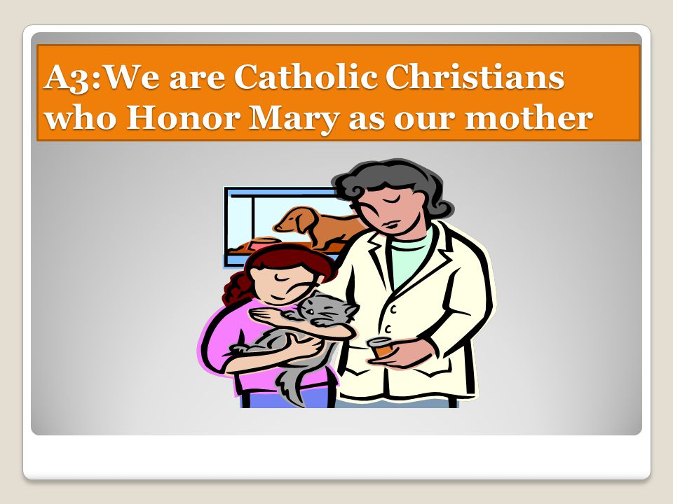A3:We are Catholic Christians who Honor Mary as our mother