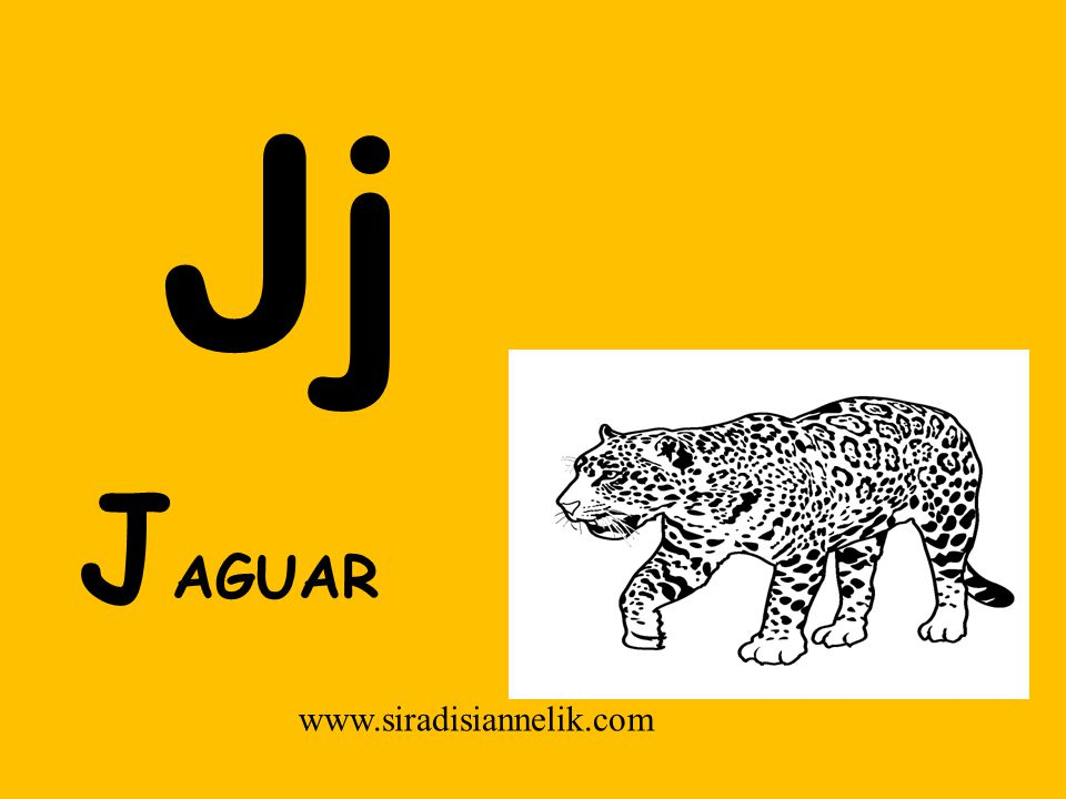 Jj www.siradisiannelik.com J AGUAR
