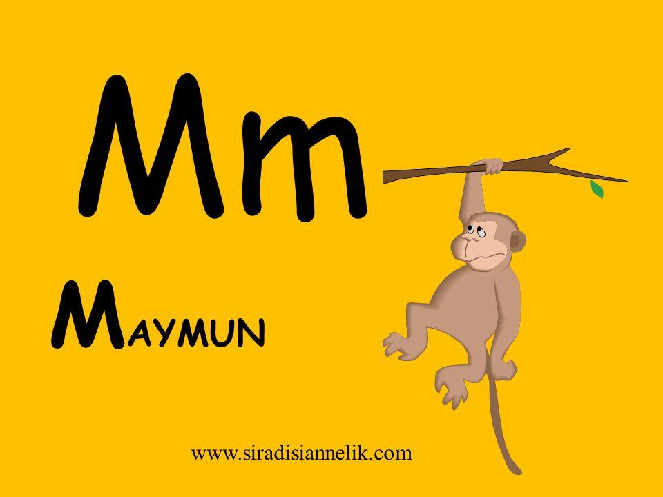 Mm M AYMUN www.siradisiannelik.com