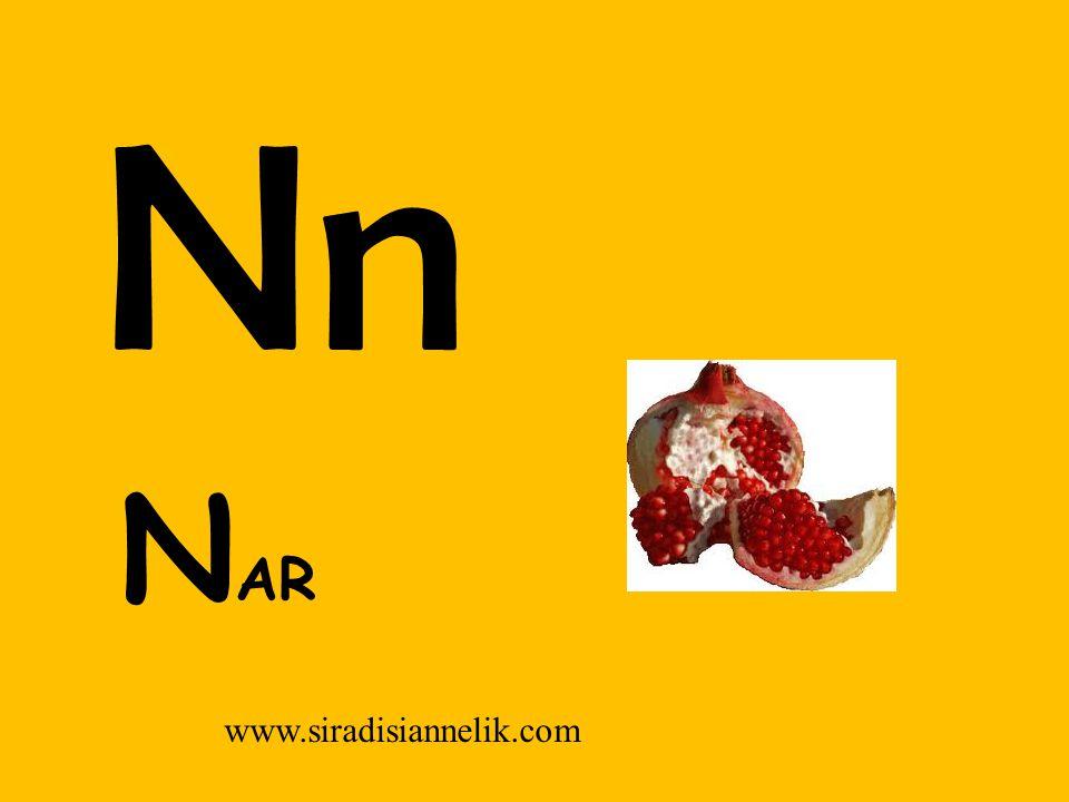 Nn www.siradisiannelik.com N AR