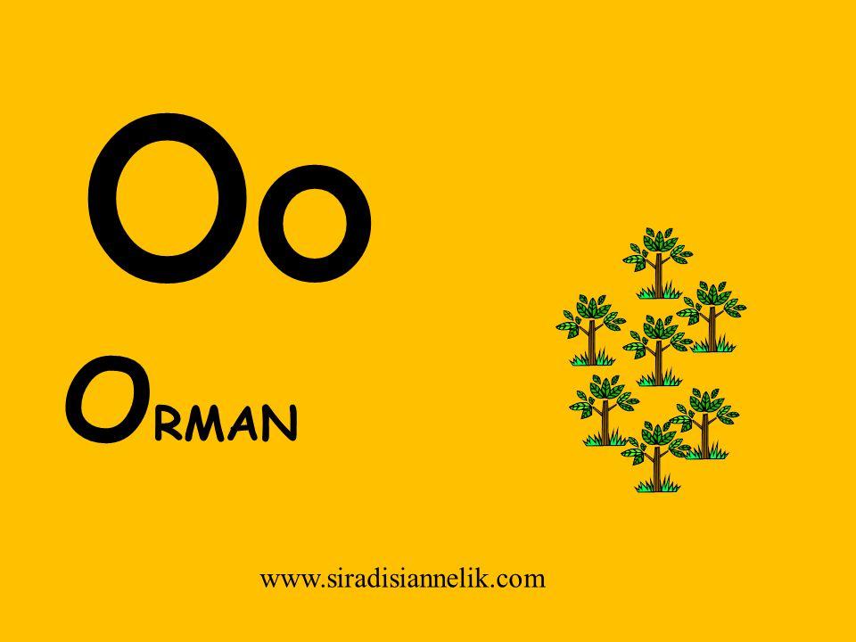Oo www.siradisiannelik.com O RMAN