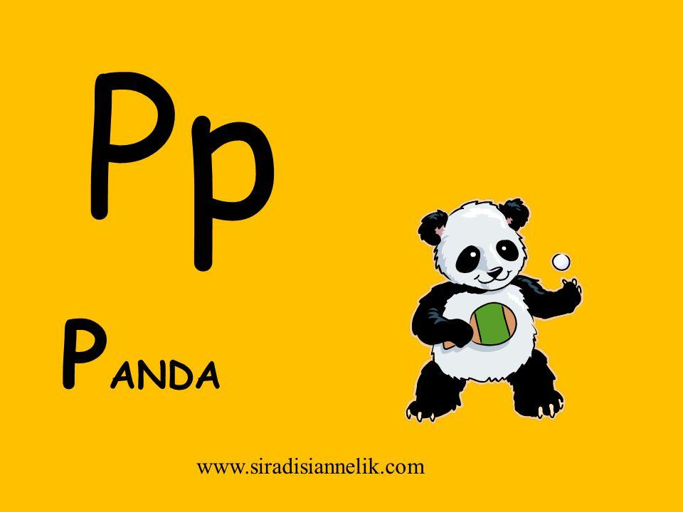 Pp P ANDA www.siradisiannelik.com