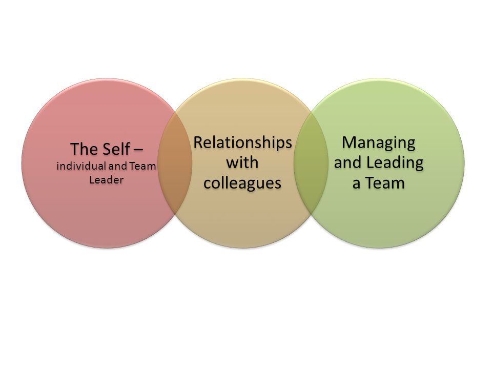 The Self – individual and Team Leader Relationships with colleagues Managing and Leading a Team