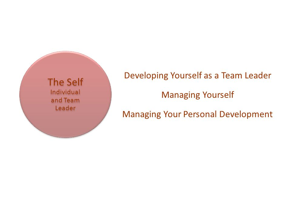 The Self Individual and Team Leader Developing Yourself as a Team Leader Managing Yourself Managing Your Personal Development