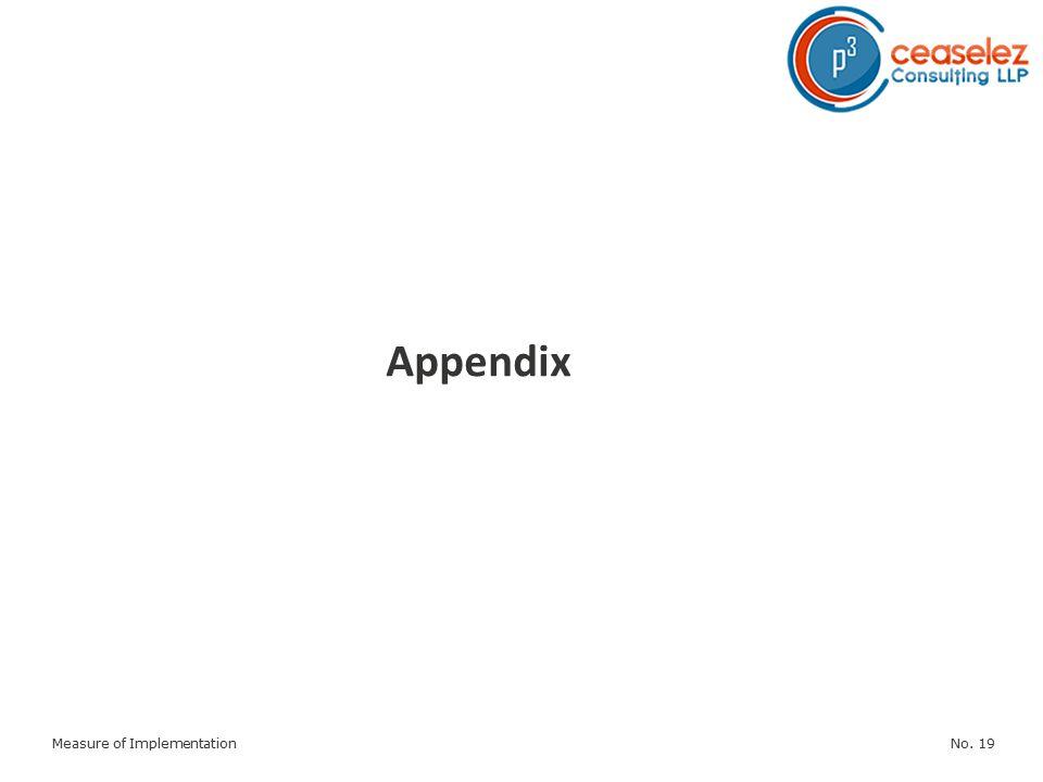 No. 19Measure of Implementation Appendix