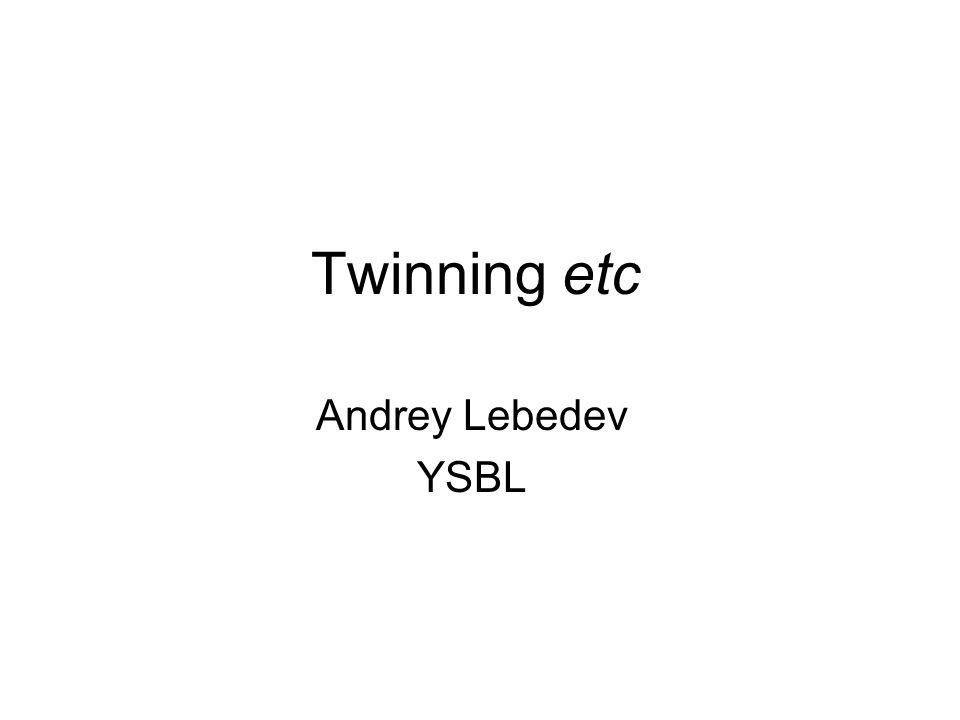 Twinning etc Andrey Lebedev YSBL