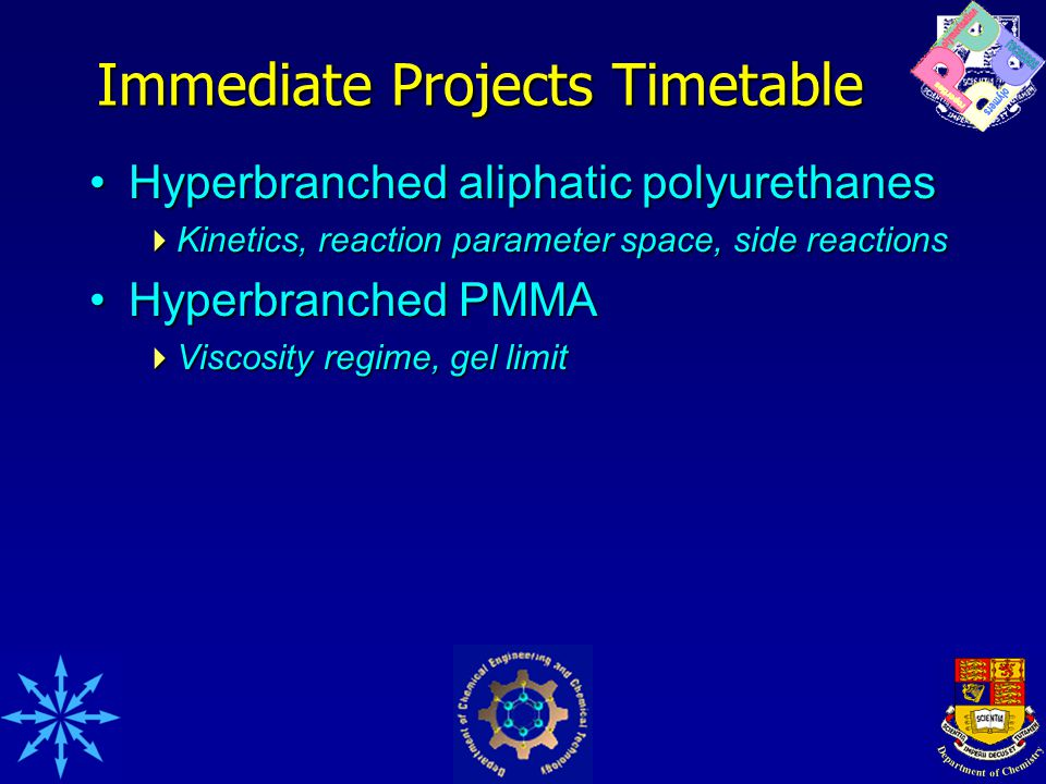 Immediate Projects Timetable Hyperbranched aliphatic polyurethanesHyperbranched aliphatic polyurethanes  Kinetics, reaction parameter space, side reactions Hyperbranched PMMAHyperbranched PMMA  Viscosity regime, gel limit