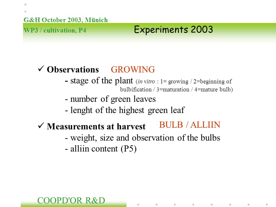 Observations - stage of the plant (in vitro : 1= growing / 2=beginning of bulbification / 3=maturation / 4=mature bulb) - number of green leaves - len
