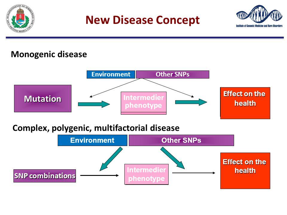 Egészségregyakorolthatás SNP combinations Other SNPsEnvironment Köztes fenotípus Effect on the health Intermedier phenotype Complex, polygenic, multif