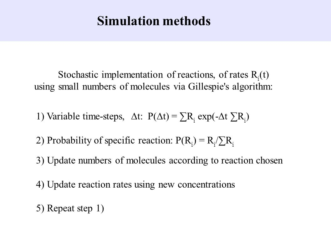 Stochastic implementation of reactions, of rates R i (t) using small numbers of molecules via Gillespie's algorithm: 1) Variable time-steps, ∆t: P(∆t)