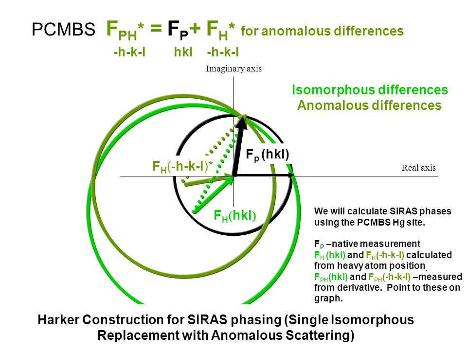 Real axis Imaginary axis F H ( hkl ) F H (-h-k-l)* F p (hkl) We will calculate SIRAS phases using the PCMBS Hg site. F P –native measurement F H (hkl)