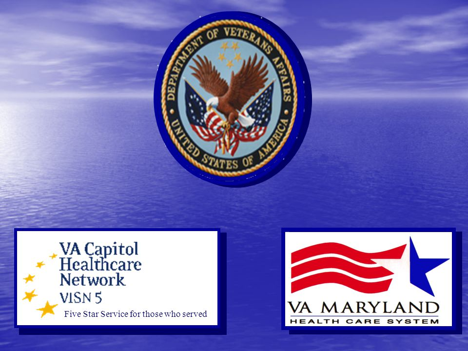 Roles of VA and DAVE Corp Assets & Capabilities of P4 Partners