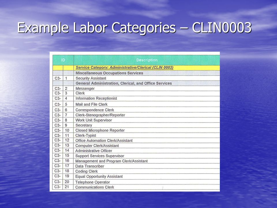Example Labor Categories – CLIN0003