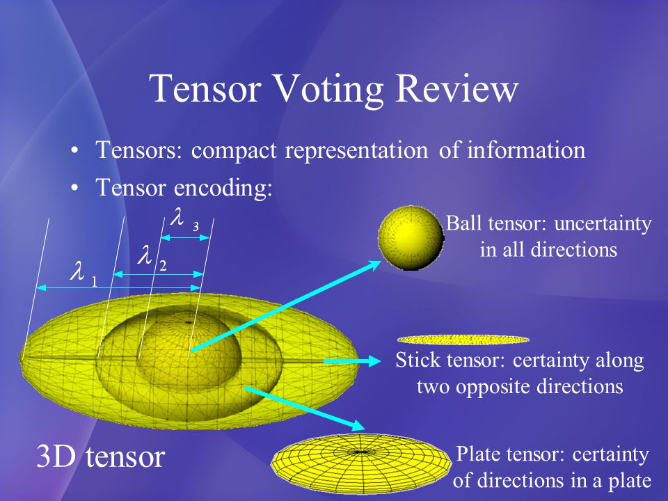 Tensor Voting Review Voting process is to propagate local information P Osculating circle