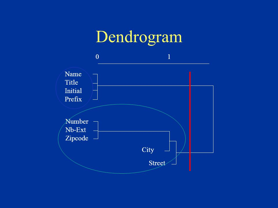 Dendrogram 01 Name Title Initial Prefix Number Nb-Ext Zipcode City Street