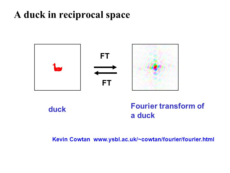 A duck in reciprocal space FT duck Fourier transform of a duck Kevin Cowtan www.ysbl.ac.uk/~cowtan/fourier/fourier.html
