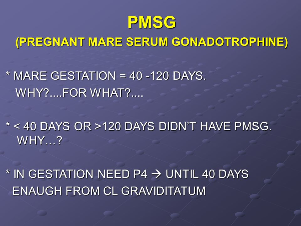 PMSG (PREGNANT MARE SERUM GONADOTROPHINE) * MARE GESTATION = 40 -120 DAYS. WHY?....FOR WHAT?.... WHY?....FOR WHAT?.... * 120 DAYS DIDN'T HAVE PMSG. WH