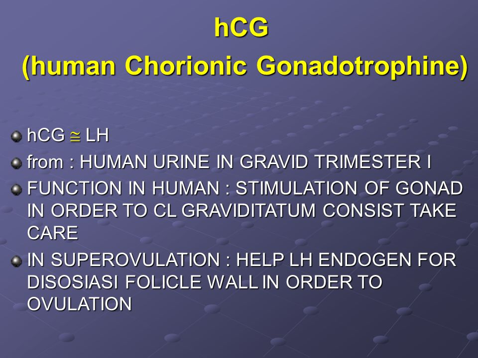 hCG (human Chorionic Gonadotrophine) (human Chorionic Gonadotrophine) hCG  LH from : HUMAN URINE IN GRAVID TRIMESTER I FUNCTION IN HUMAN : STIMULATION OF GONAD IN ORDER TO CL GRAVIDITATUM CONSIST TAKE CARE IN SUPEROVULATION : HELP LH ENDOGEN FOR DISOSIASI FOLICLE WALL IN ORDER TO OVULATION