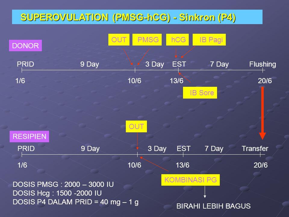 DONOR RESIPIEN PRID 9 Day 3 Day EST 7 Day Flushing PMSG PRID 9 Day 3 Day EST 7 Day Transfer hCG IB Pagi IB Sore 1/6 10/6 13/6 20/6 SUPEROVULATION (PMS