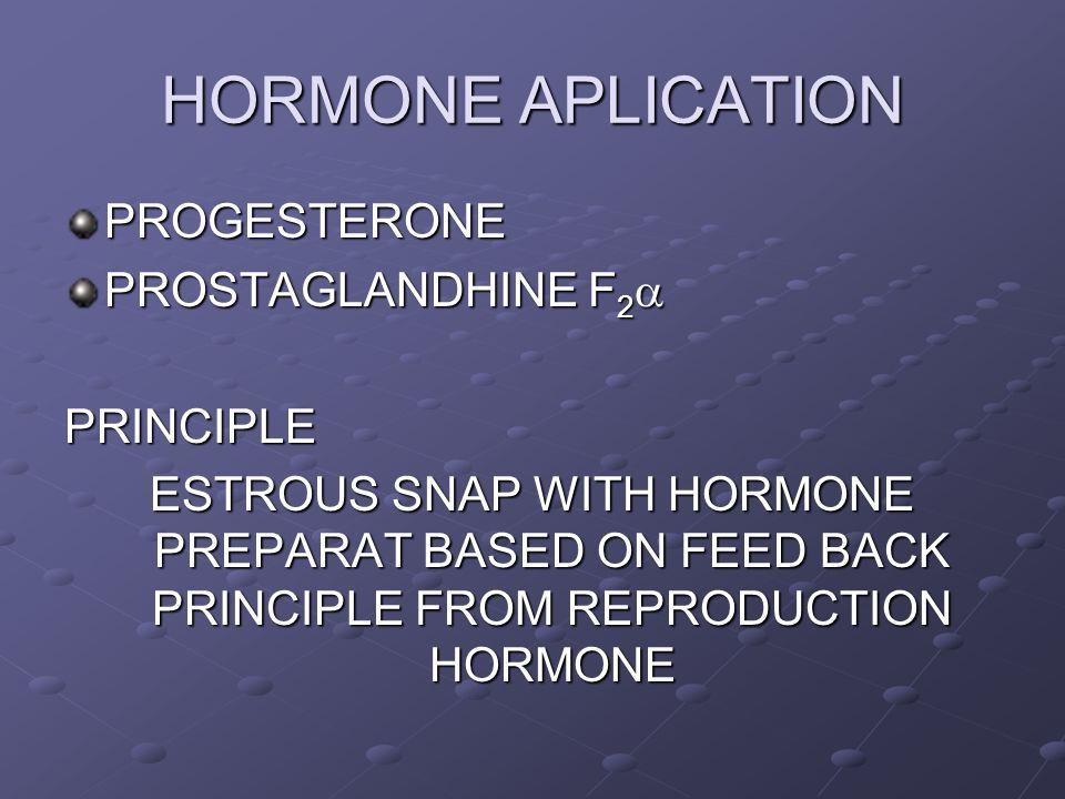 HORMONE APLICATION PROGESTERONE PROSTAGLANDHINE F 2  PRINCIPLE ESTROUS SNAP WITH HORMONE PREPARAT BASED ON FEED BACK PRINCIPLE FROM REPRODUCTION HORM