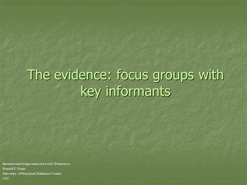 The evidence: focus groups with key informants International Symposium on Local E-Democracy Donald F.
