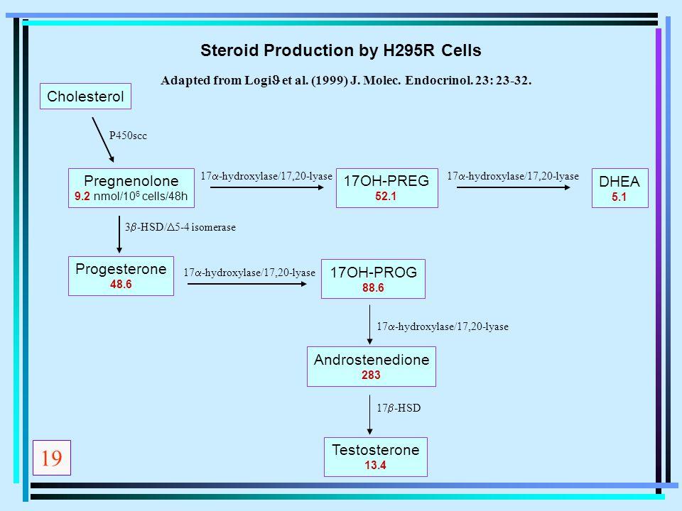 Cholesterol Pregnenolone 9.2 nmol/10 6 cells/48h 17OH-PREG 52.1 DHEA 5.1 Progesterone 48.6 17OH-PROG 88.6 Androstenedione 283 Testosterone 13.4 3  -H