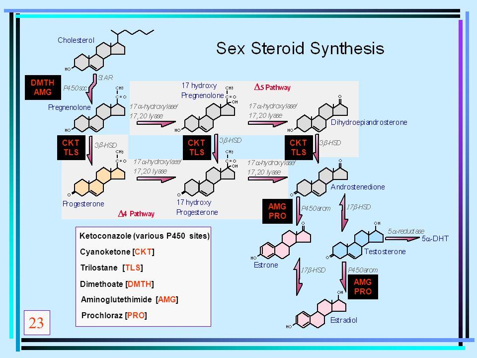 23 Ketoconazole (various P450 sites) Cyanoketone [CKT] Dimethoate [DMTH] Trilostane [TLS] Aminoglutethimide [AMG] Prochloraz [PRO] CKT TLS CKT TLS CKT
