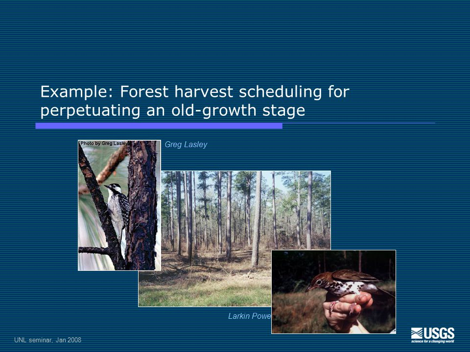 UNL seminar, Jan 2008 Example: Forest harvest scheduling for perpetuating an old-growth stage Greg Lasley Larkin Powell